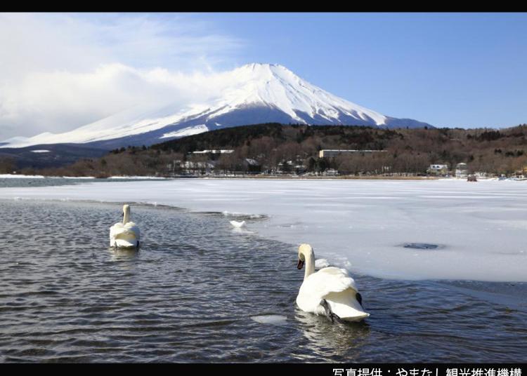 8.Lake Yamanaka