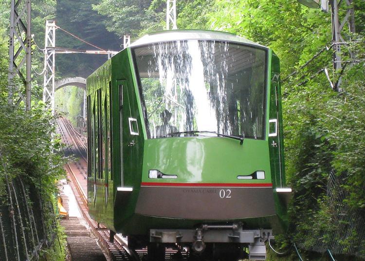 5.Oyama