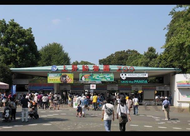 10.Ueno Zoo (Ueno Zoological Gardens)