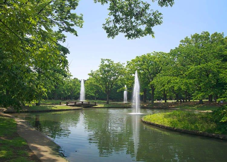 第2位:代々木公園