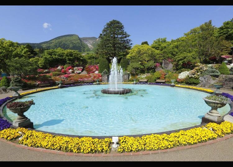 3.Hakone Gora Park