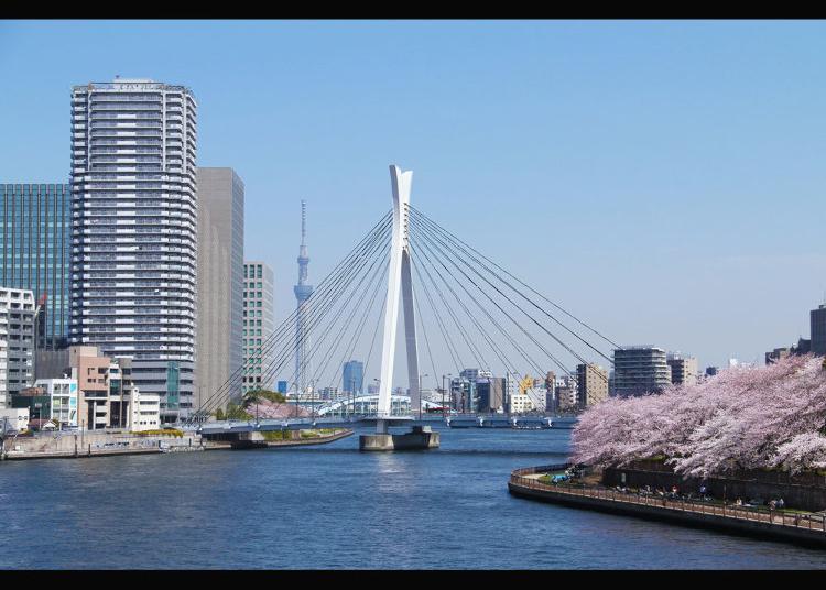 6. Chuo-Ohashi Bridge