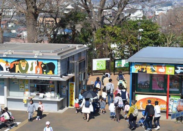 5.Nogeyama Zoo
