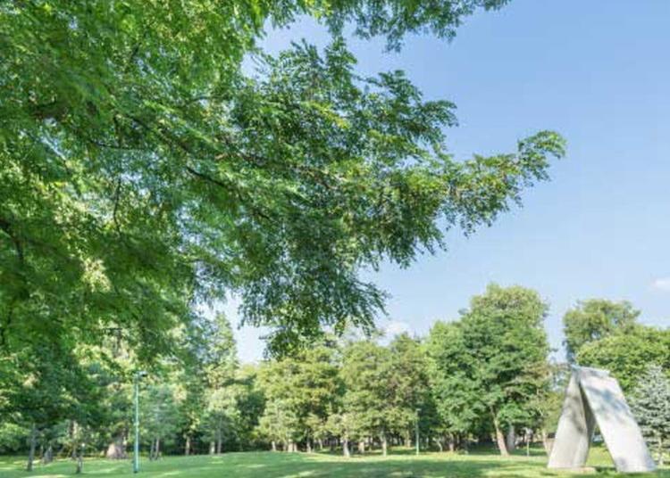 5.Tokiwa Park