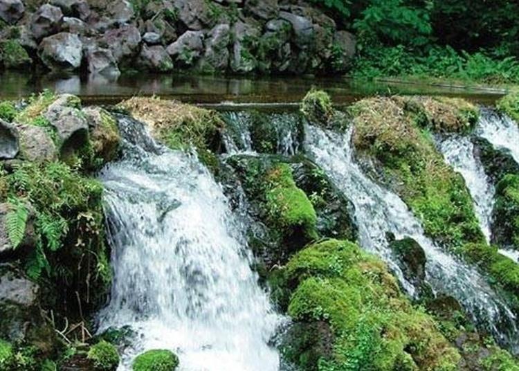 8.Fukidashi Springs Mount Yotei