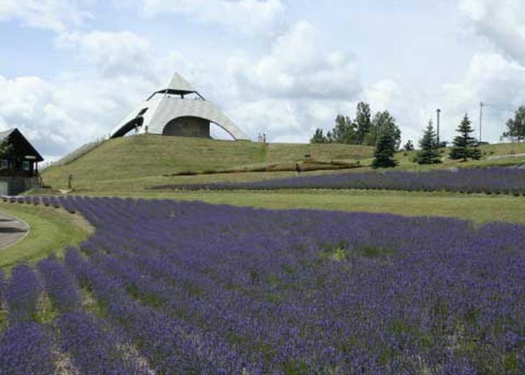 10.Hokusei-no-oka hills Observatory park