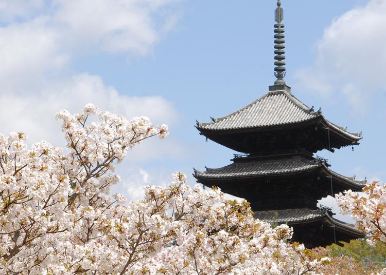 4.Ninna-ji Temple