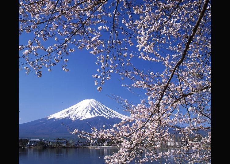 2.Lake Kawaguchiko