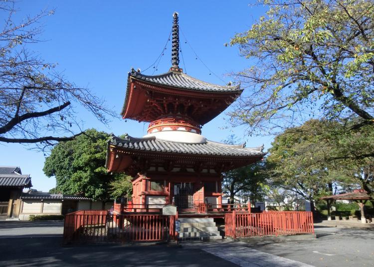 8.Kawagoedaishi Kitain Temple