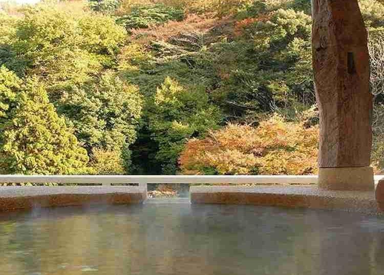 第10名:Hakone Suimeisou Hotel