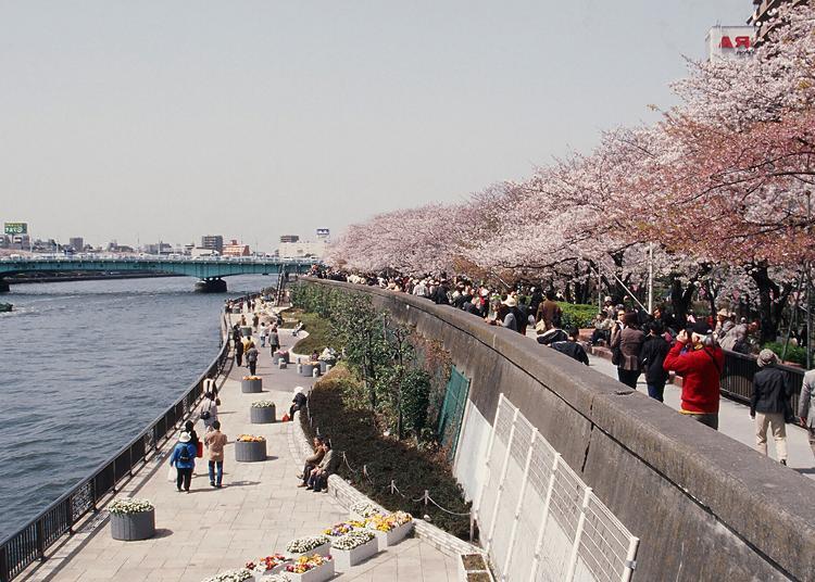 第8名:隅田公园