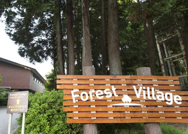 第1名:Forest Village