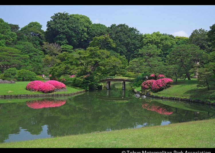 8.Rikugien Gardens