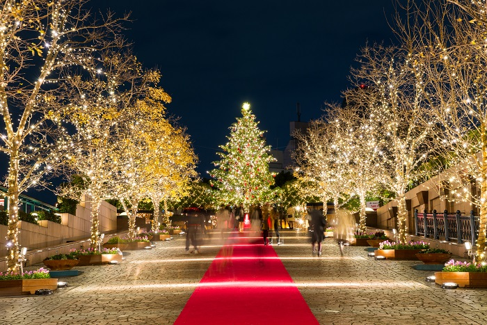 Book now! Hotels for a luxury Christmas stay in the city