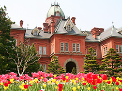 札幌、千岁的概要.历史