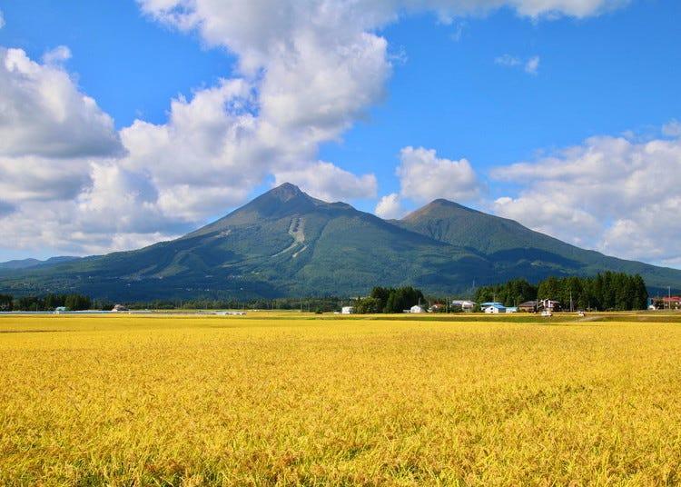 ฟุกุชิมะ/โคะริยามะ/อิวากิของภาพรวมและประวัติศาสตร์