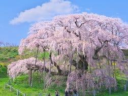 Koriyama Surrounding Areas