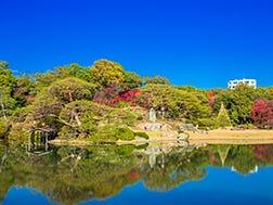 Ikebukuro Surrounding Areas