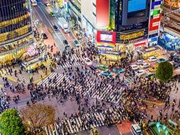 Shibuya:Gambaran keseluruhan dan Sejarah