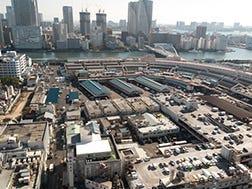Tsukiji:Ikhtisar dan Sejarah