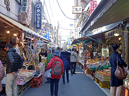 Tsukiji Inner and Outer Fish Market