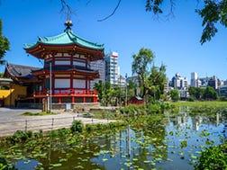 Ueno:Ikhtisar dan Sejarah