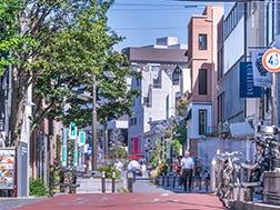 猫街 (Cat Street)