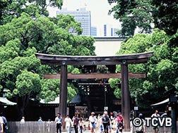 Kuil Meiji-Jingu