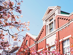 Mid-April: Cherry Blossoms at the Japan Mint