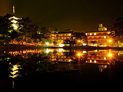 8月上旬:奈良灯花会