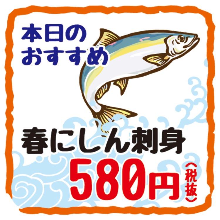 新鮮的太平洋鯡本日06:00到貨