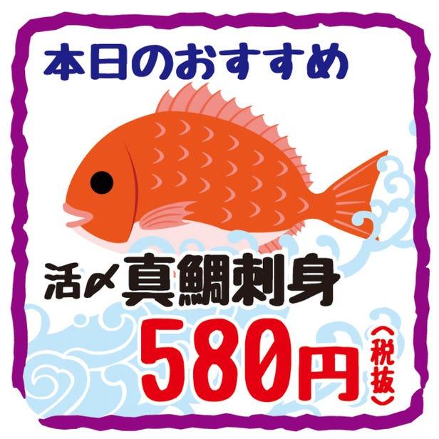 新鮮的鯛魚本日06:00到貨