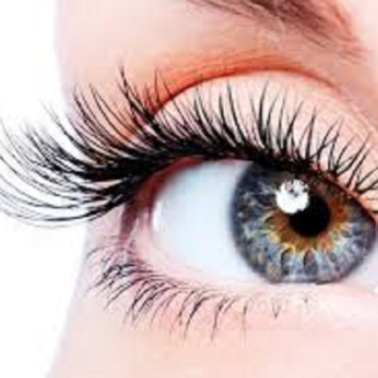 Unlimited Lower Eyelash Extensions \1,000