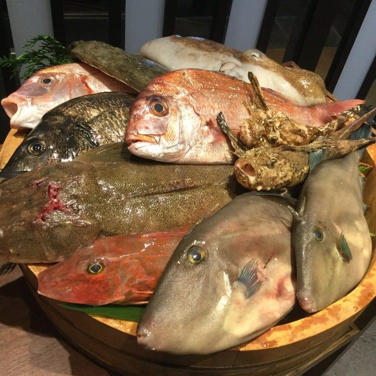 【毎週水曜日16:30〜】瀬戸内漁港から届いた鮮魚をお刺身で!