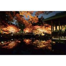 "Famous Place: ""Otaguro Park"" in Ogikubo"