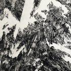 Naoto Sunohara: Fragments from Scailing Mountain