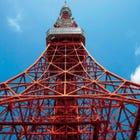 DYNAMIC TOKYO 도쿄 관광 1일 투어