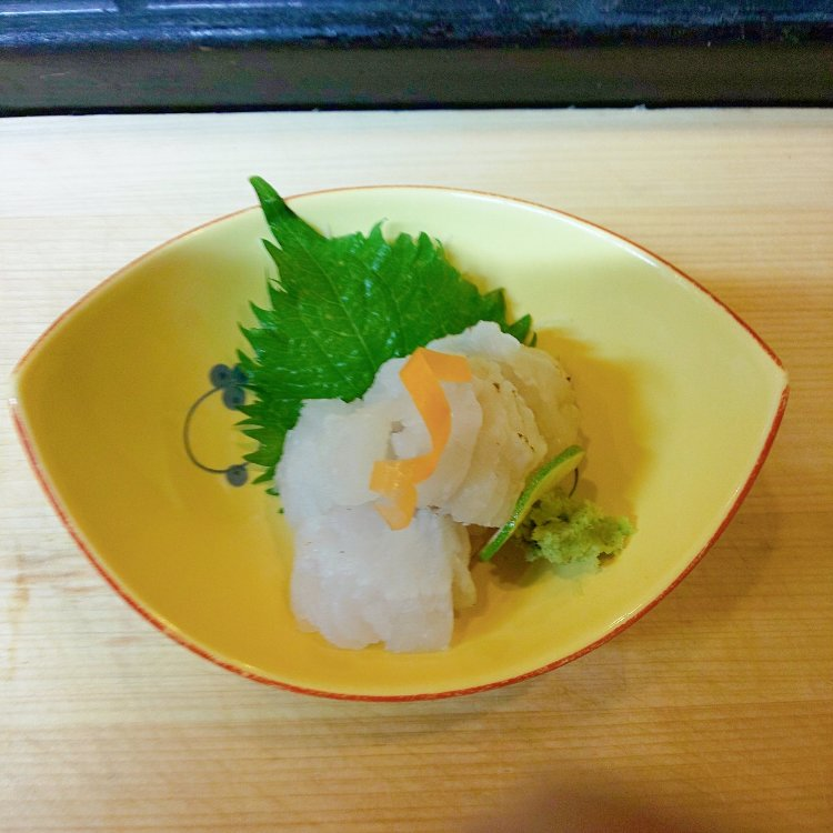 sea eel course