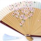 Silk Folding Fan