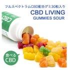 CBD LIVING - CBD GUMMIES