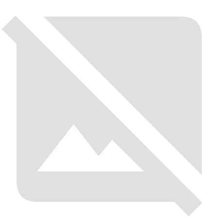 脇指/肥州「出羽守行廣(初代)」(附保存刀劍鑑定證書)