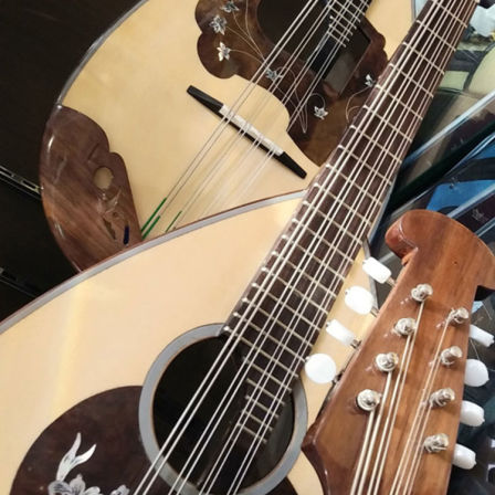 【Mandolin & Mandocello】<br />