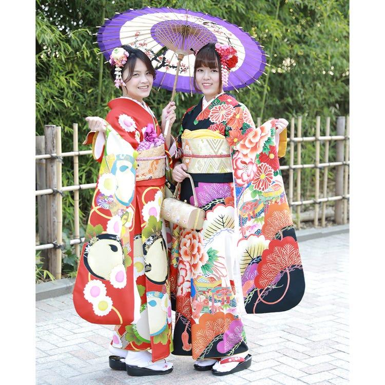Single-pattern  Furisode Plan (Long-sleeved kimono normally worn by young unmarried women)