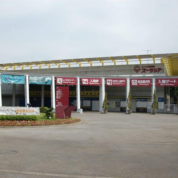 橫濱動物園Zoorasia
