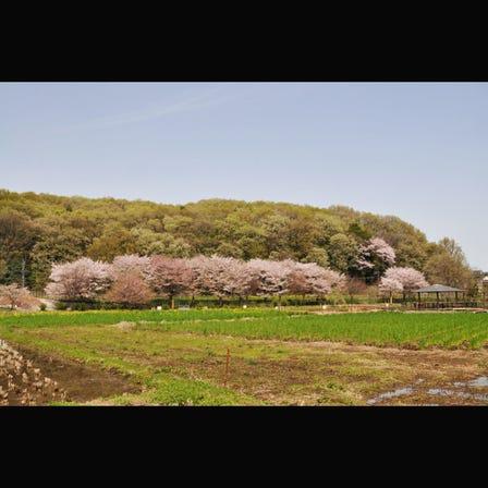하치코쿠야마 녹지