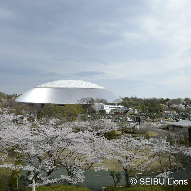 MetLife Dome