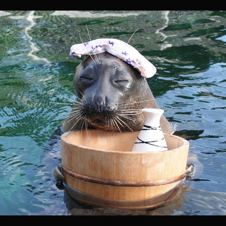 Hakone-en Aquarium
