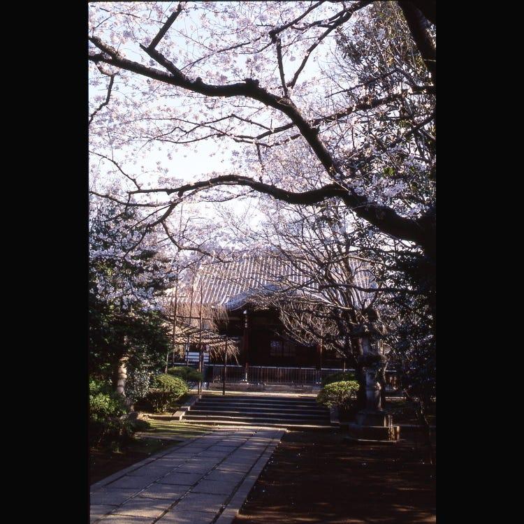 Homyoji Temple