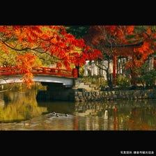 鹤岗八幡宫