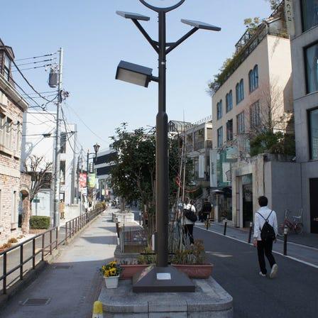 涉谷Cat Street